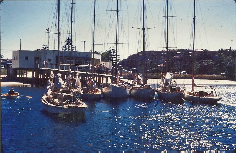 Middle Harbour Yacht Club in Dec 1954