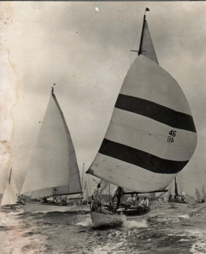 Siandra under spinnaker in race